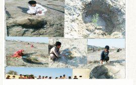 طبیعت دوستان روستای گتی به دست خود درختی نشاندند
