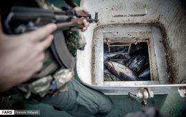 توقیف کشتی با ۷۰۰ تُن ماهی صید شده غیرقانونی