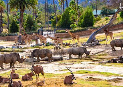 بزرگترین باغ وحشهای جهان را بشناسید