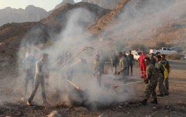 مانور اطفاء حریق در منطقه حفاظت شده گنو