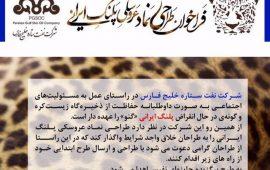 فراخوان طراحی نماد عروسکی پلنگ ایرانی منتشر شد