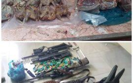 یک نفرمتخلف شکاروصید در شهرستان رودان دستگیرشد